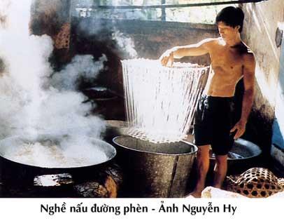 nau_duong_phen